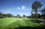 The Montgomerie Maxx Royal Golf Club's lovely golf course within dramatic Belek.