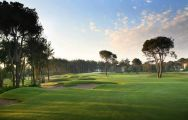 Montgomerie Maxx Royal Golf Course, the 15th fairway