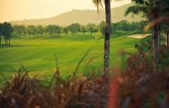 Pattana Sports Club offers among the premiere golf course within Pattaya