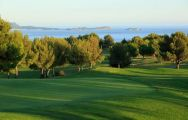 All The Golf Dolce Fregate Provence's lovely golf course in magnificent South of France.