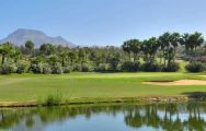 The Golf Las Americas's lovely golf course within brilliant Tenerife.