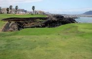 The Amarilla Golf and Country Club's lovely golf course within brilliant Tenerife.