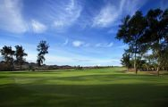 All The Maspalomas Golf Course's scenic golf course within marvelous Gran Canaria.