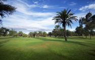 The Maspalomas Golf Course's scenic golf course in gorgeous Gran Canaria.