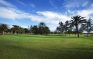 Maspalomas Golf Course features some of the finest golf course in Gran Canaria