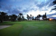 All The Maspalomas Golf Course's lovely golf course in dramatic Gran Canaria.