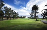 Maspalomas Golf Course includes some of the leading golf course around Gran Canaria