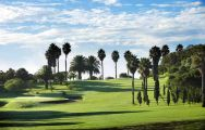 All The Real Club de Golf de Las Palmas's impressive golf course within brilliant Gran Canaria.