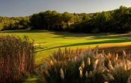 Golf Santa Ponsa 1 hosts lots of the best golf course within Mallorca