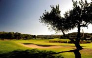 Son Muntaner Golf Course - Arabella Golf consists of lots of the finest golf course near Mallorca