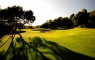 Son Muntaner Golf Course - Arabella Golf consists of several of the best golf course in Mallorca