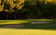 All The Real Golf de Bendinat's picturesque golf course within astounding Mallorca.