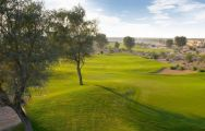 Arabian Ranches Golf Club has among the most popular golf course in Dubai