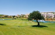 View Boavista Golf Club's lovely golf course within impressive Algarve.
