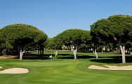 View Dom Pedro Pinhal Golf Course's beautiful golf course within gorgeous Algarve.