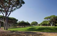 The Dom Pedro Pinhal Golf Course's impressive golf course in incredible Algarve.