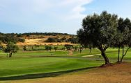 The Morgado Golf Course's beautiful golf course within staggering Algarve.