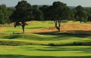 All The East Sussex National Golf Club's lovely golf course in sensational Sussex.