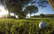 The Alenda Golf Course's lovely golf course situated in staggering Costa Blanca.