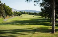 The Bonalba Golf Course's lovely golf course in pleasing Costa Blanca.