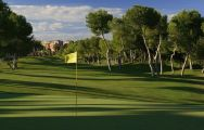 The Las Ramblas Golf Course's impressive golf course situated in vibrant Costa Blanca.