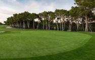 The Villamartin Golf Course's impressive golf course situated in amazing Costa Blanca.