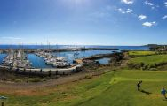 The Amarilla Golf and Country Club's lovely golf course situated in marvelous Tenerife.