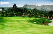 The Bangpra Golf Club's scenic golf course within marvelous Pattaya.