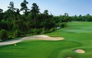 The Charleston National Golf Club's scenic golf course within dazzling South Carolina.