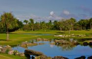 The Cocotal Golf and Country Club's impressive green situated in magnificent Dominican Republic.