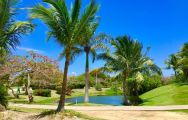 The Cocotal Golf and Country Club's lovely golf course within stunning Dominican Republic.