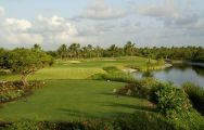 View Cocotal Golf and Country Club's beautiful golf course in vibrant Dominican Republic.