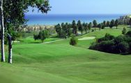 The Dona Julia Golf  Club's lovely golf course within magnificent Costa Del Sol.