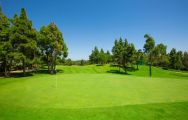 The El Chaparral Golf Club's impressive golf course situated in pleasing Costa Del Sol.