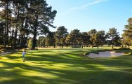 The Ferndown Golf Club's picturesque golf course in pleasing Devon.