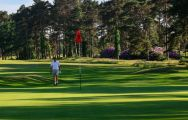 View Ferndown Golf Club's picturesque golf course situated in incredible Devon.