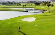 View Fuerteventura Golf Club's beautiful golf course within stunning Fuerteventura.