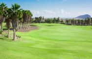 The Golf del Sur's lovely golf course situated in staggering Tenerife.