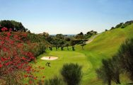 View Los Flamingos Golf Course's picturesque golf course within dazzling Costa Del Sol.