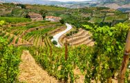 The Douro Valley where Porto makes its famous Port wine