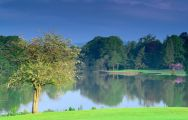 View Malone Golf Club's beautiful golf course in striking Northern Ireland.