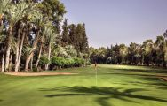 Royal Golf Marrakech's picturesque golf course within impressive Morocco.
