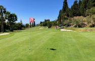 The Baviera Golf's lovely golf course in pleasing Costa Del Sol.