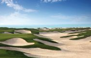 Saadiyat Beach Golf Club boasts lots of the most desirable golf course near Abu Dhabi
