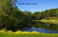 All The Druids Glen - Wicklow Golf Club's beautiful golf course within pleasing Southern Ireland.