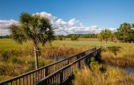 RiverTowne Country Club has got some of the most excellent golf course around South Carolina