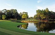 Innisbrook Golf consists of some of the finest golf course around Florida