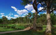 Innisbrook Golf offers among the top golf course within Florida
