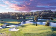All The Innisbrook Golf's lovely golf course situated in dazzling Florida.