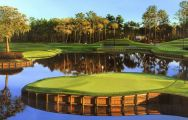 TPC Sawgrass Golf has some of the finest golf course in Florida